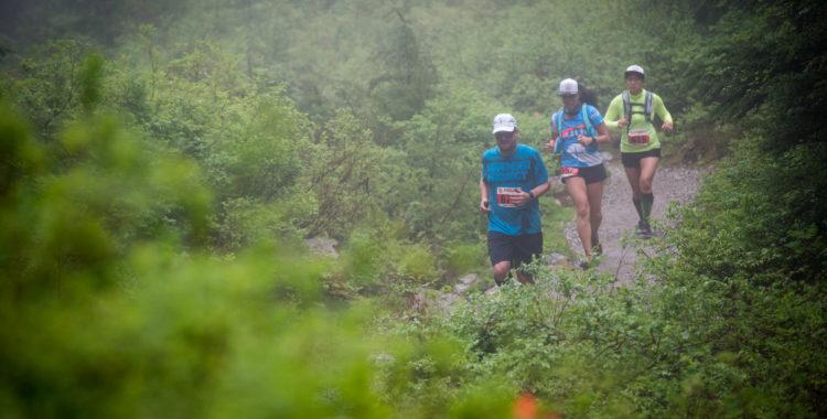 Race Recap: 5 Peaks Trail Running Series 3 - Mt. Seymour